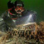Mergulhadores alemães encontram equipamento nazista perdido no fundo do Mar Báltico